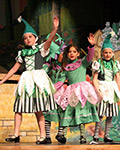 2014 Magical Land of Oz
